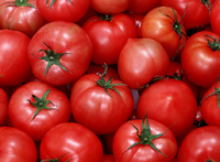 Clean Tomatoes